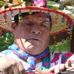 mother_earth_project_healing-sessions_with_huichol-schamanen_2014_small (1)