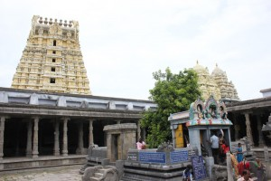 kanchipuram-ekambranath-temple-mango-tree